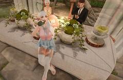 Wedding Crasher (Kilisini) Tags: wedding n21 cute mandala ikon little bones truth littlebones zaara isuka punch maddict vco phedora sl secondlife second life kawaii pink event gacha