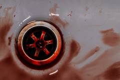 Blood (Francesca Perri) Tags: detail blood nikon d5100