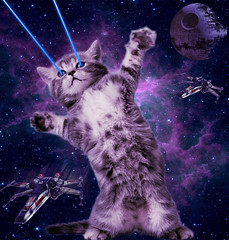 space-kitty (Onyx23) Tags: blue cat photoshop starwars kitten purple space galaxy nebula lasers galaxies oc deathstar xwingfighter spacecat spacekitten imgur