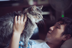 milo/daddy (Nazra Zahri) Tags: man adam home k japan cat daddy asian japanese 50mm hugging holding nikon raw husband munchkin somali nikkor talking okayama 50mmf14d 2013 d700 vscofilm