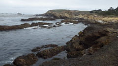 Conglomerate and beach (rhyang) Tags: hiking centralcaliforniacoast pointlobosstatereserve
