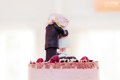 "Cake Couple • <a style=""font-size:0.8em;"" href=""https://www.flickr.com/photos/41772031@N08/9261268254/"" target=""_blank"">View on Flickr</a>"