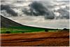 los royos IV (muliterno) Tags: campos losroyos