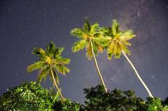 Cu de Palmas - Ilha Grande (wes.gomes) Tags: sky night way star grande long via galaxy milky ilha starry lactea expousure