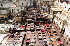 Tannery (Patrick Costello) Tags: leather morocco bazaar souq fes tannery fsboulemane