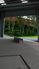 bigger hill (erinmatthes) Tags: video skatepark finn ever burley iphone balancebike mykick