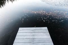 2009-DSC_2633.jpg (Jules Paquin) Tags: lake ice leaves horizontal dock hiver lac jour qubec format paysage et quai feuilles glace priode saison julespaquin