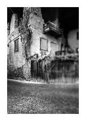Dark Place (Khuzul (Alessandro Petri)) Tags: houses italy rain clouds canon eos spring village cloudy bokeh outdoor naturallight horror trento 5d oldhouses trentino badweather tse mkii markii 24tse serso khuzul 5dmkii