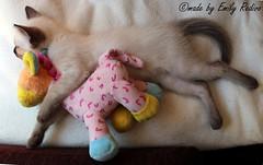 cuddling (EmilyRedivo_phoDOGraphy) Tags: sleeping baby cat bed klein kitten little sweet small dream couch giraffe katze schlafend cuddling bunt schlaf traum trumen ss siamcat siamnese kuschel