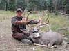 New Mexico Elk Hunt 62