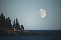 Acadia NP, Maine (Joseph M. Campbell) Tags: autumn fall nature nationalparks acadianp