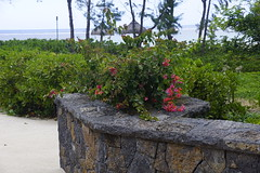 Sofitel So Mauritius, Bel Ombre (19) (JULIAN MASON) Tags: mauritius sofitel beauchamp 2013 belombre julianmason somauritius
