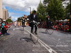 2013 Christmas Pageant (Paula McManus) Tags: christmas bike bikes olympus parade adelaide pageant southaustralia pennyfarthing christmaspageant paulamcmanus creditunionchristmaspageant olympuspenepl1 vision:mountain=0536 vision:car=054 vision:street=0657 vision:outdoor=0972 2013creditunionchristmaspageant 2013christmaspageant