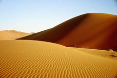 L1030847m (christophe carlier) Tags: leica 50mm desert f14 voigtlander m8 12 40mm aus sesriem namibia 15mm nokton m9 sossusvlei namib spitzkoppe deadvlei namibie m82 kolmanskop namibnaukluftpark mmount canon50mmf12ltm m9p
