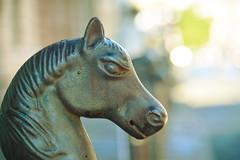 horse for a horse (moosebite) Tags: horse metal artistic neworleans moosebite jrgoodwin