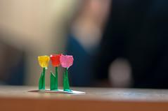saita, saita (jam343) Tags: 50mm kyoto origami tulip 京都 チューリップ 折紙 折り紙
