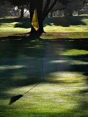 Playing God (Steve Taylor (Photography)) Tags: shadow sun tree green silhouette yellow golf god flag player rays beams