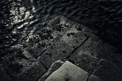 Pyramids (Nimble Pixel) Tags: ocean sea seaweed water granite barnacles ripples breakwater