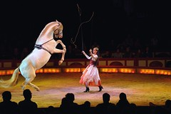 Zirkus Krone -Jana Lacay- Krone-