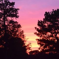 Pretty nice sunset tonight in Letohatchee, AL. #TheWorldWalk #sunset #travel #twwphotos