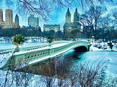 After Stella, Bow Bridge March 2017 (dannydalypix) Tags: newyorkcity stella manhattan nyc centralpark bowbridge