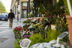 Flower sale. (Ole-Gunnar) Tags: street flowers paris france color canon 50mm spring sale streetphotography sidewalk 5d fullframe 5dmk3 50mmlf12