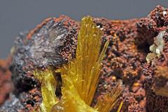 legrandite, adamite, limonite (géry60) Tags: mexico durango limonite mapimi adamite legrandite ojuelamine mundemapimi