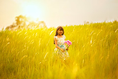 Little girl on meadow with sunset (Patrick Foto ;)) Tags: sunset red summer portrait sky people woman sun green nature girl beautiful beauty field grass silhouette female hair children asian thailand outside outdoors happy person one freedom kid spring model colorful pretty day child play little outdoor joy daughter young meadow posing lifestyle happiness running scene fresh human thai playful musi nakhonratchasima