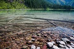 Avalanche Lake (John Sieber) Tags: photography montana nps glaciernationalpark gnp avalanchelake montanamoment