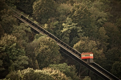 Slow and Steady (Rukasu1) Tags: trees leaves train washington nikon pittsburgh mt pennsylvania tram mount pa nikkor 70300mm incline funicular 2013 d5000 afzoomnikkor70300mmf456g nikond5000