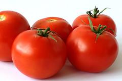 Tomato (amazondiscovery1) Tags: tomato