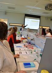 Nascholing Technisch Onderwijs Assistenten (Siesjadotcom) Tags: november amsterdam 28 van universiteit praktijk biorad 2013