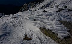 Frozen creature (Yoshia-Y) Tags: snow frozenice hardrime japancentralalps