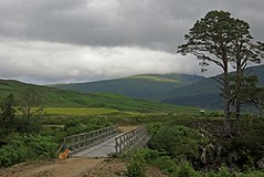 Bridge Over the River Mallie (RoystonVasey) Tags: bridge dog forest canon scotland scenic powershot loch picturesque hs mallie arkaig locheil inver glenmallie sx260