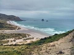 Sandfly Bay on Otago Peninsula (Kevin Fenaughty) Tags: newzealand panorama holiday beach outdoor otago sandflybay