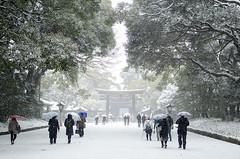 Meiji-jingu (ta3mam) Tags: snow tokyo nikon shrine harajuku   neige   japon meiji jingu fuyu   35f18 d7000