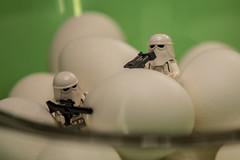 Easter Egg Dyeing - Camouflage (agaethon29) Tags: starwars lego minifigs legostarwars minifigure