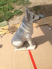 German Shepherd State - BEFORE Side2 (sillysyd) Tags: dog art statue garden painting paint shepherd cement wip german restoration process airbrush
