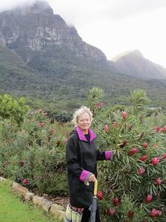 Cape Town Luxury Safari 7
