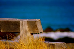 Out to Sea - HBM (Sarah Fraser63) Tags: blue sea grass bench nz wellington monday bays hmb