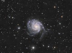 The Pinwheel Galaxy (Mickut) Tags: komakallio triussx814 galaxy m101 thepinwheelgalaxy messier spiralgalaxy astrometrydotnet:id=nova1991429 astrometrydotnet:status=solved