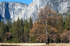 Impermanence (Daniel Vicario) Tags: california unitedstates us