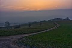 The curve (Rita Eberle-Wessner) Tags: landschaft landscape weg path feldweg weide meadow curve sonnenaufgang sunrise kurve acker acre odenwald baum bäume tree trees fog nebel morning