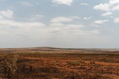 DSC06841_DxO_Bildgröße ändern (Jan Dunzweiler) Tags: afrika madagaskar fahrradreise radreise momotas africanbikers jandunzweiler horombe horombeplateau