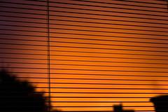 i will always enjoy looking at you, sky. (he.lov) Tags: raw colorsinourworld heloisa vianna pellegrini helov instagram helovpellegrini amauteur amadora photographer fotografa girl menina canon eos 60d 60 d lightroom processed with tratada com sunset fim de tarde por do sol orange sombra shadow sun day end dia catarina santa catarinense brasil brazil br sc brasileira brazilian spring primavera contraste manual white balance sobra balanço branco laranja contrast minimalismo textura abstrato céu sky ceu