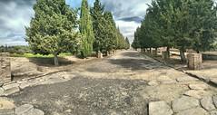 Italica. Santiponce (Sevilla) (jose de sp) Tags: italica santiponce sevilla andalucia spain roma anfiteatro