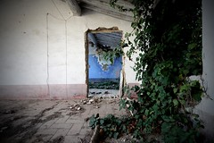 Nature is a language (Cristianella) Tags: thesmiths ask abandoned farmhouse abbandono casa colonica ivy edera
