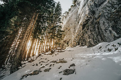 Ettaler Mandl (andronyit) Tags: climbing natural sunset nature ettal germany outdoor bayern alpen snow trees tree alps forest hiking light bavaria ettalermandl new frühling deutschland mountain