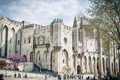 Cité des Papes (Joeydarkroom) Tags: avignon cité des papes architecture ville urban nikond7100 france