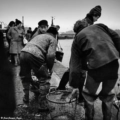 0530 - Boulogne sur mer, 1974 (ikaune) Tags: nb bw noiretblanc blackandwhite ikaune argentic argentique monochrome boulognesurmer pêche rolleiflex